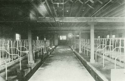 1921 Barn Interior